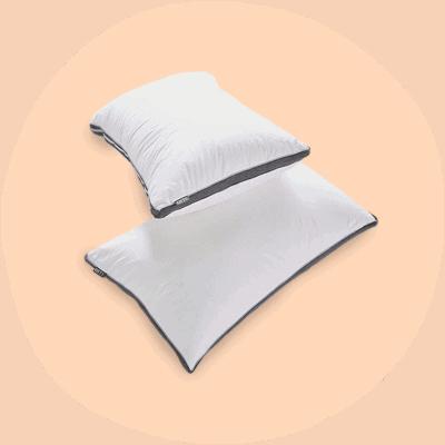 OTTY Pillow