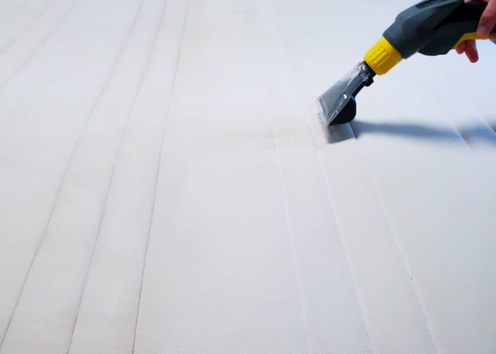 remove mould from the mattress